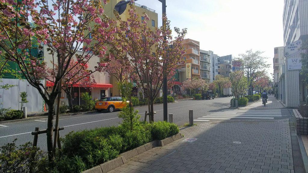 世田谷区桜新町駅周辺
