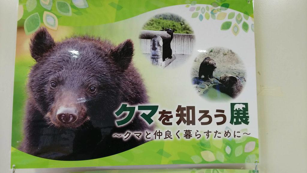 くまくま園 クマを知ろう