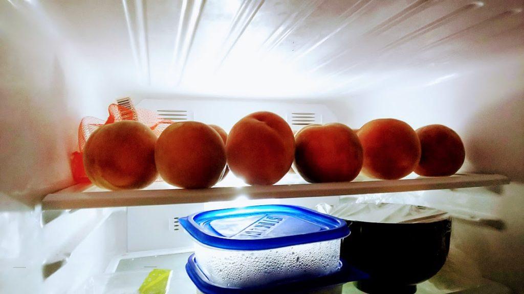 昨年、我が家の冷蔵庫が突然モモに占有されました。